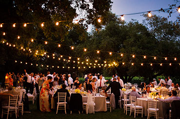 wine-country-weddings-reception